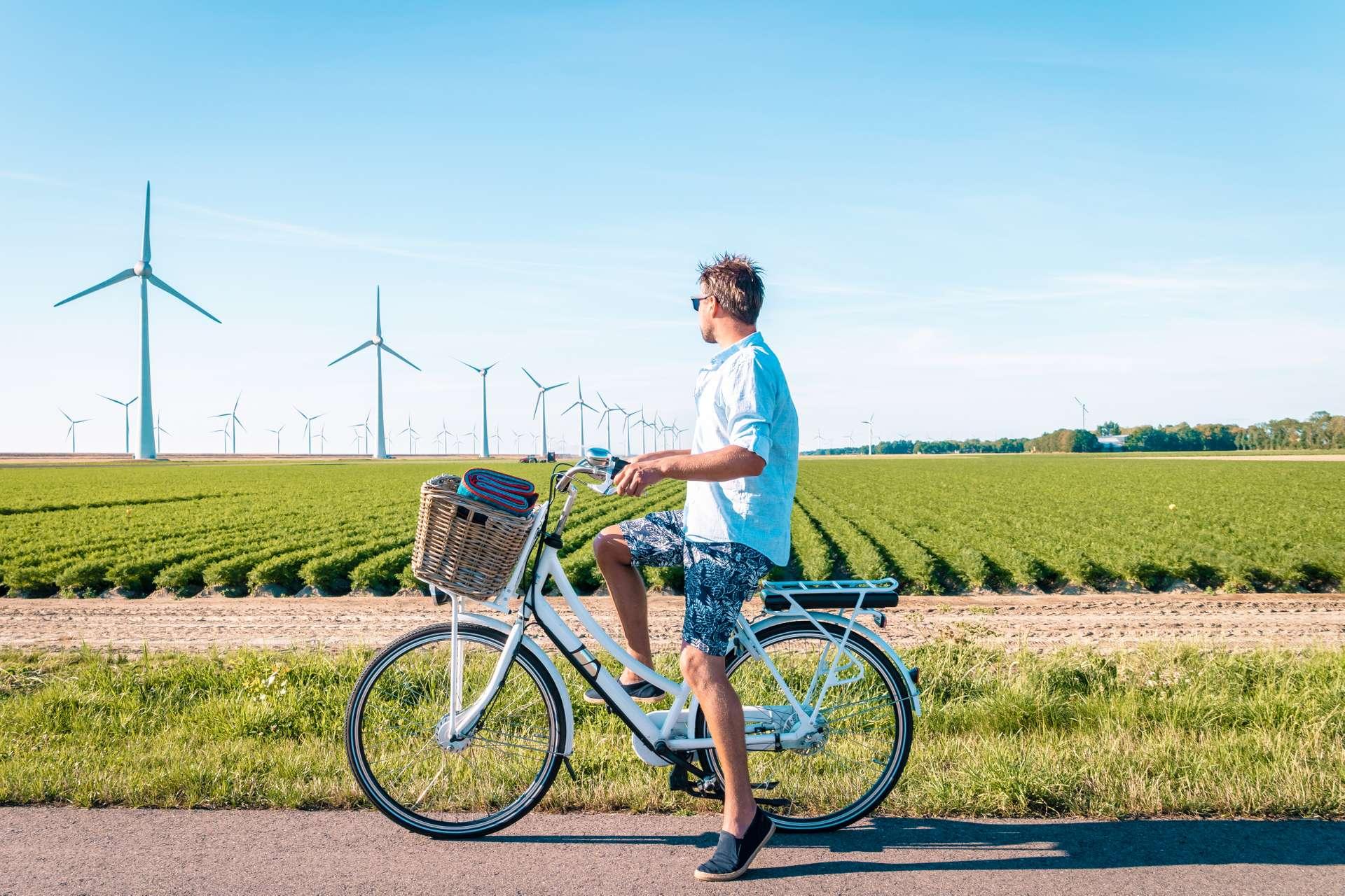 vakantie nederland polder flevoland