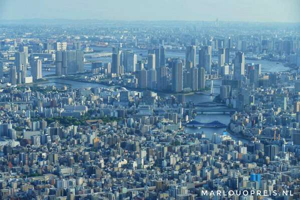 Metropolitan Government Building Tokyo