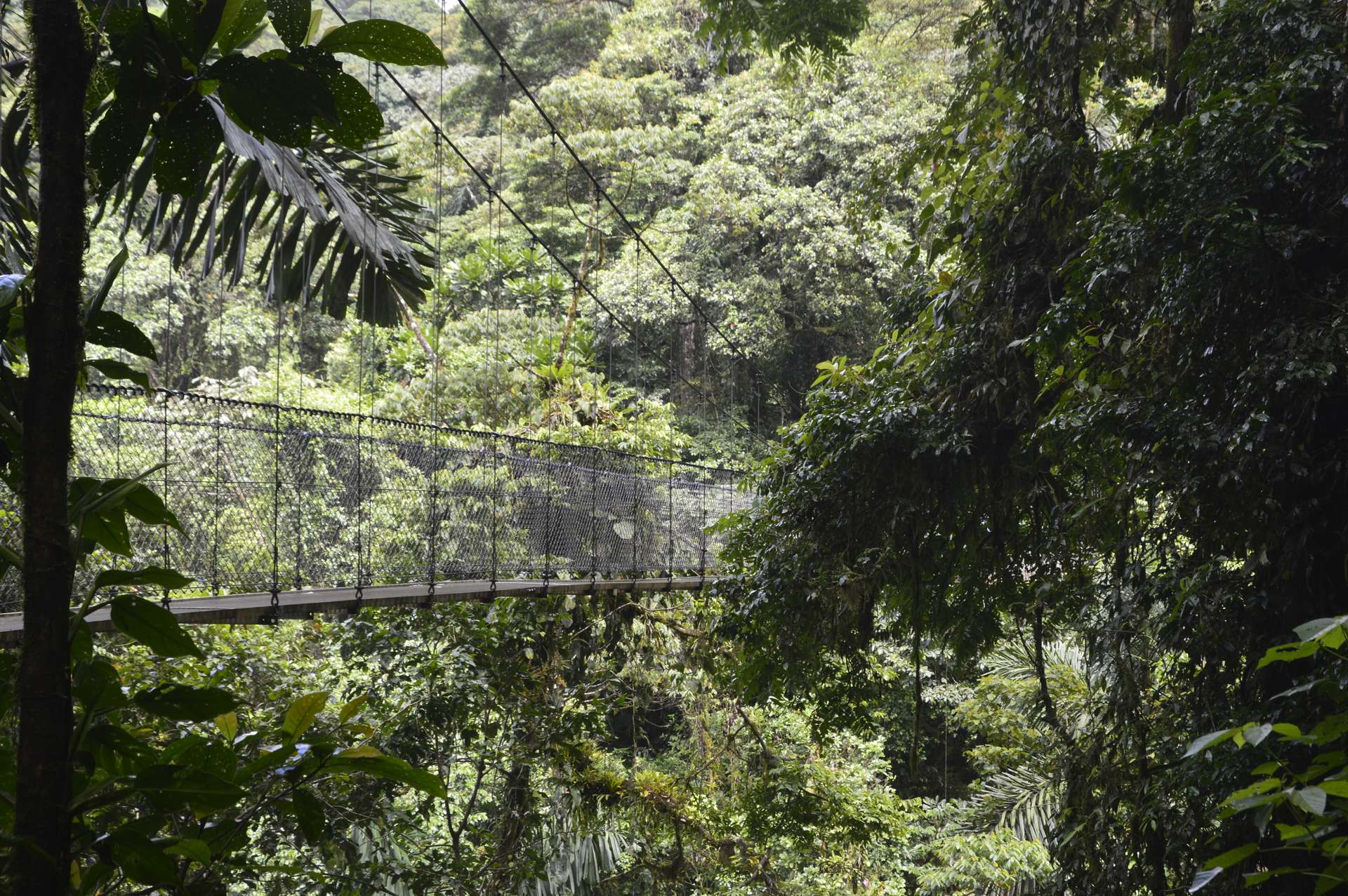 Costa Rica, La Fortuna, Mistico