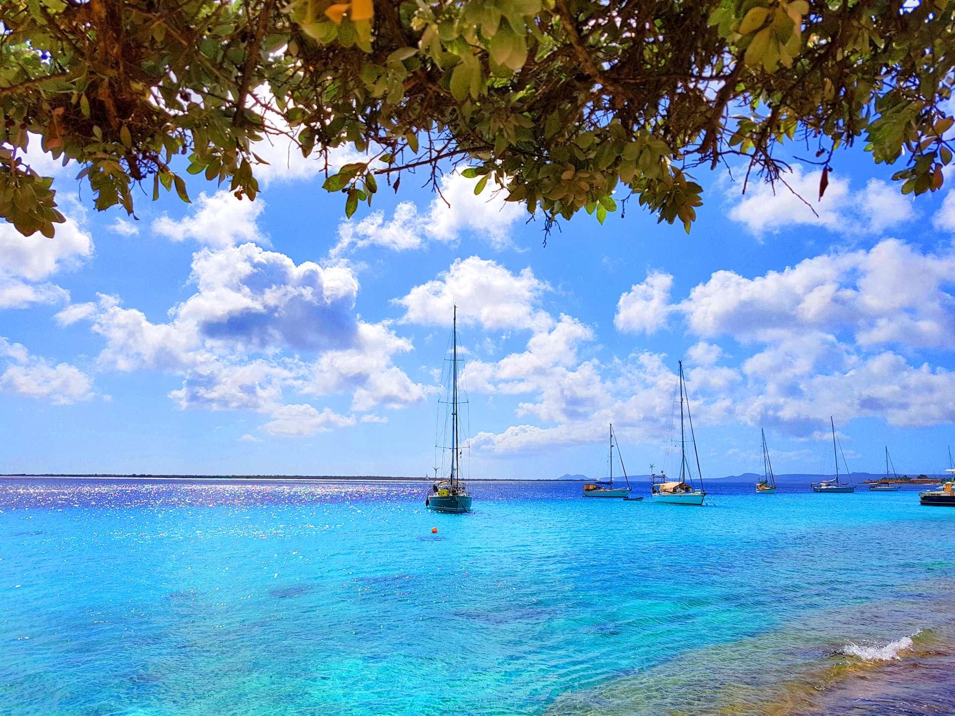 Bonaire1