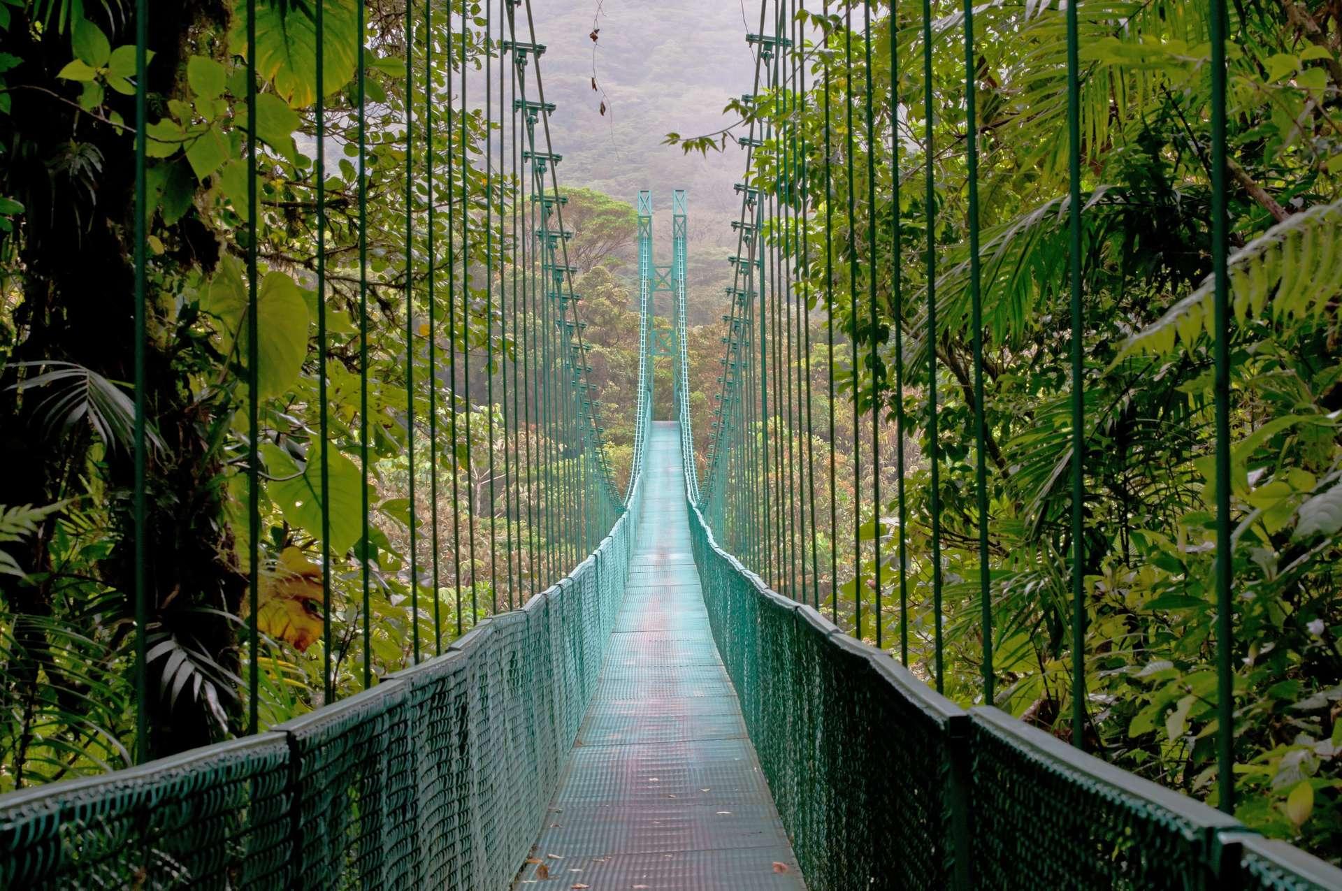 Costa Rica Monteverde hangbrug