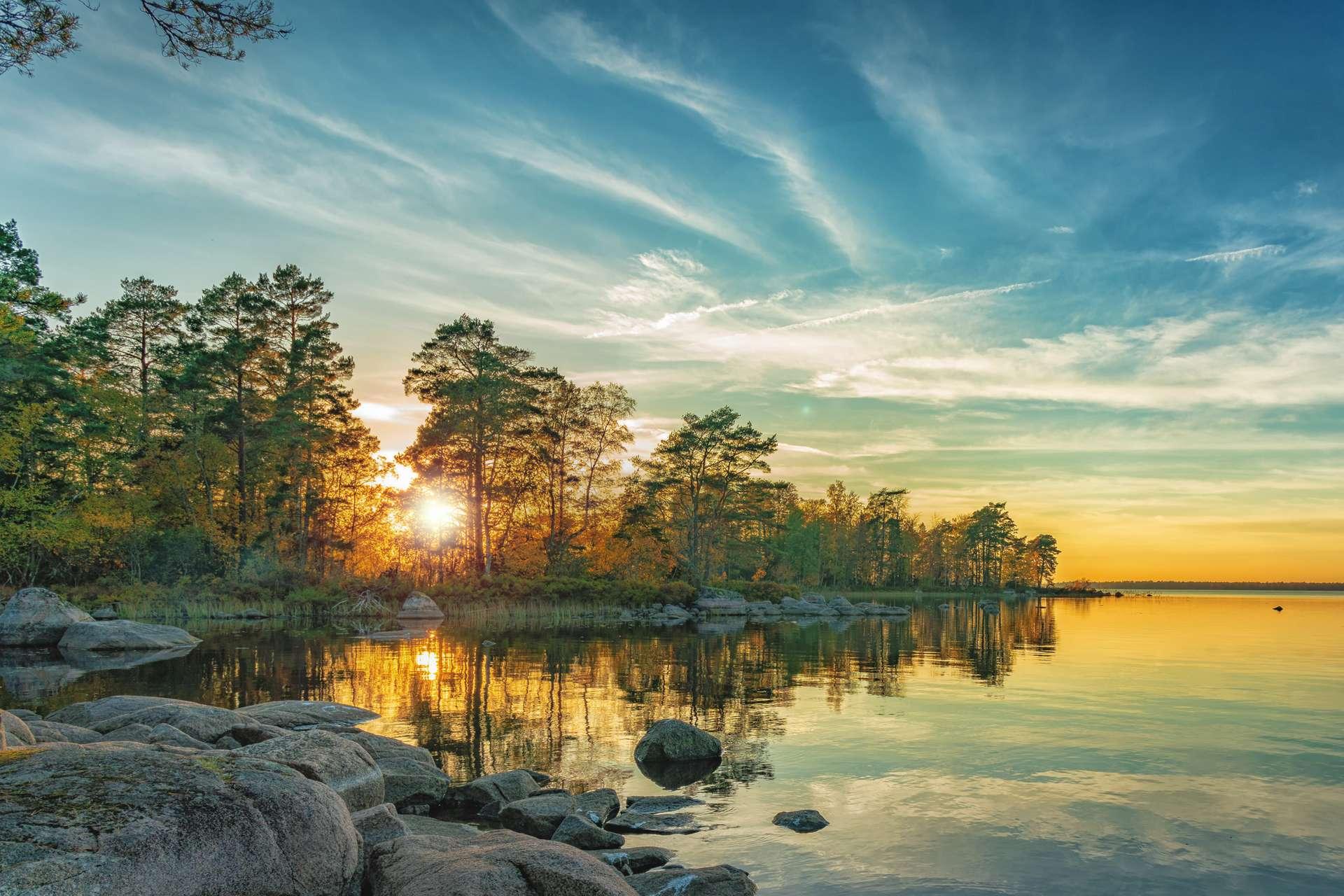 Zweden landschap natuur herfst