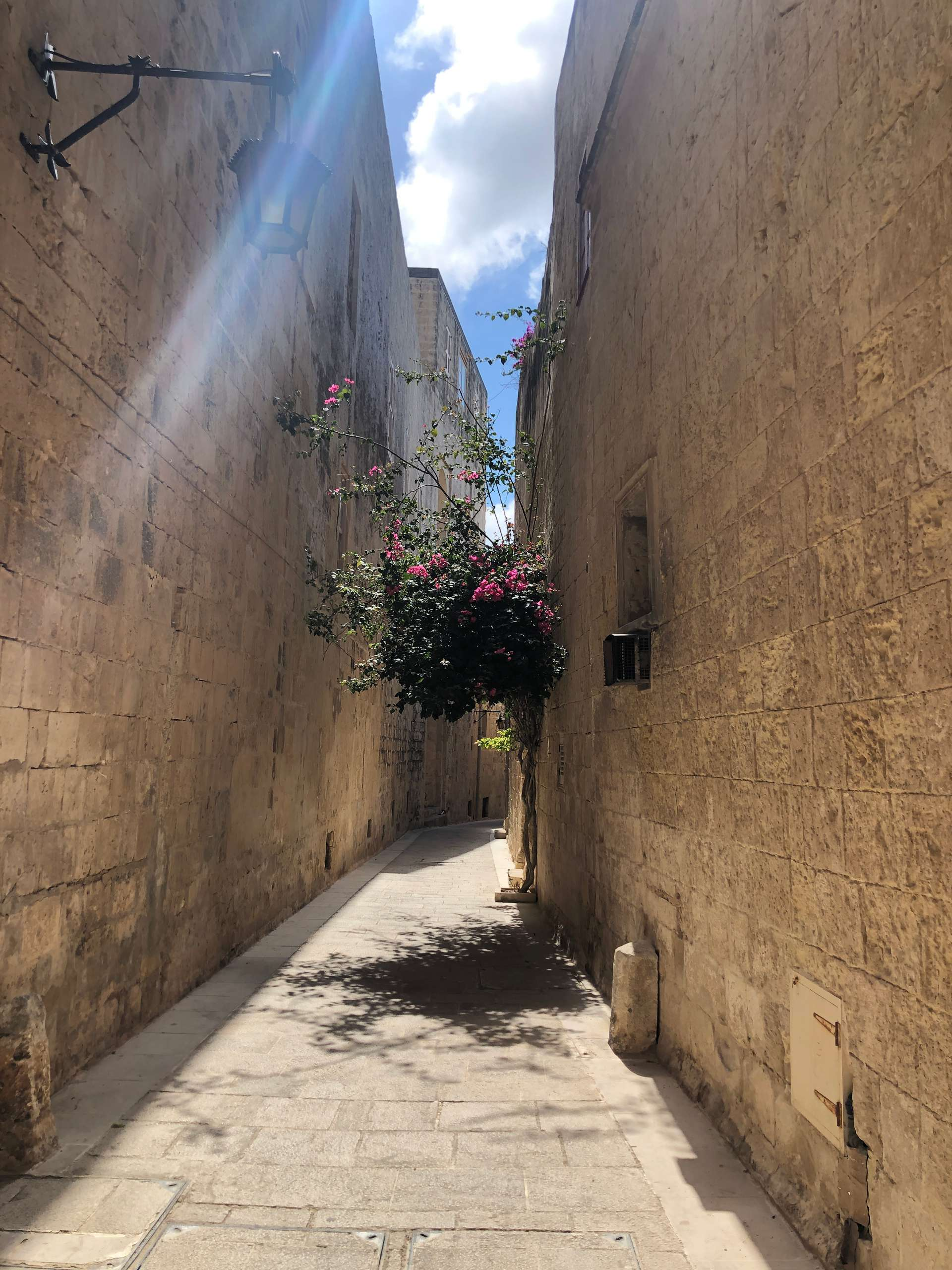 Smalle steegjes in Mdina