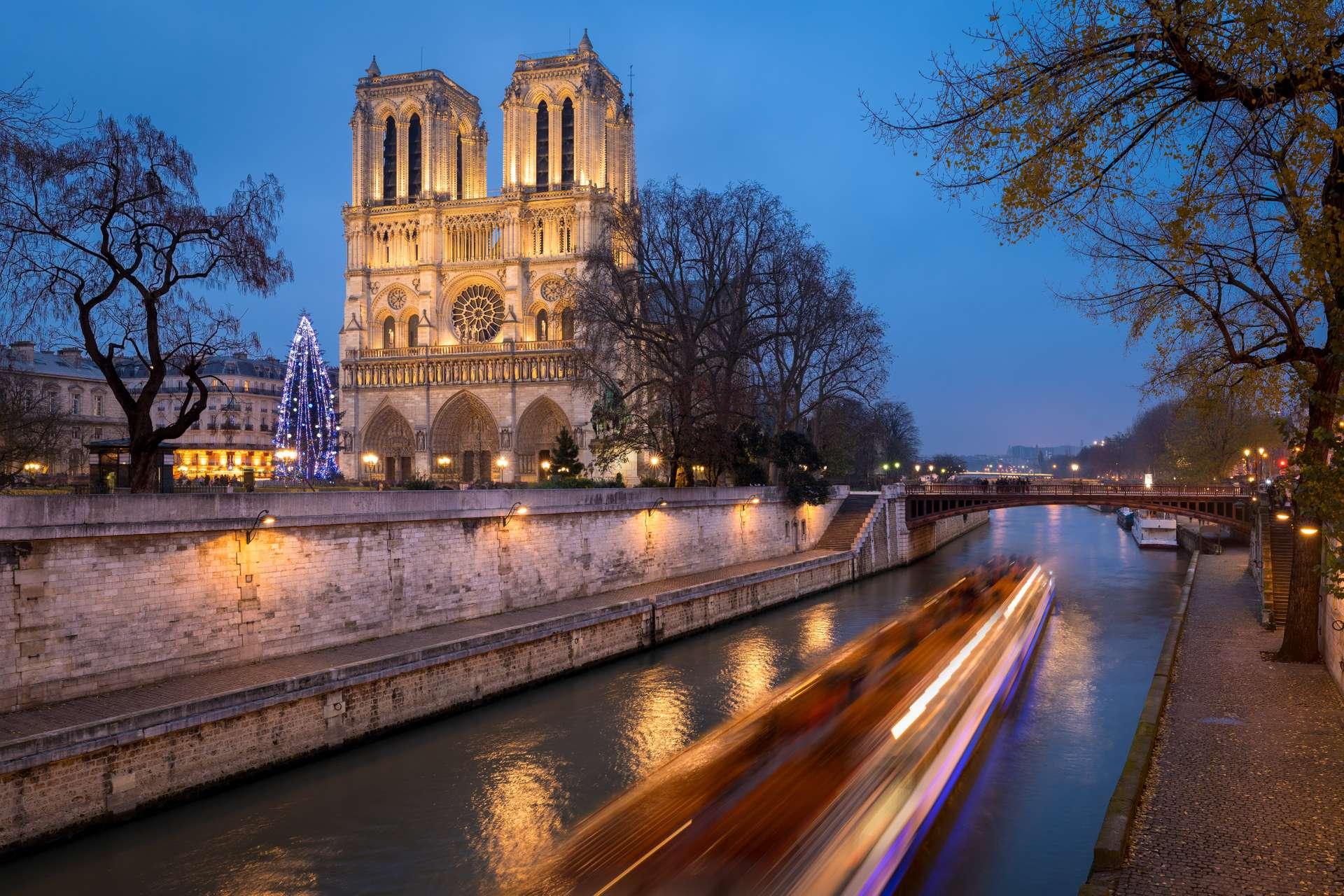 Frankrijk Parijs Christmas Tree at Notre Dame