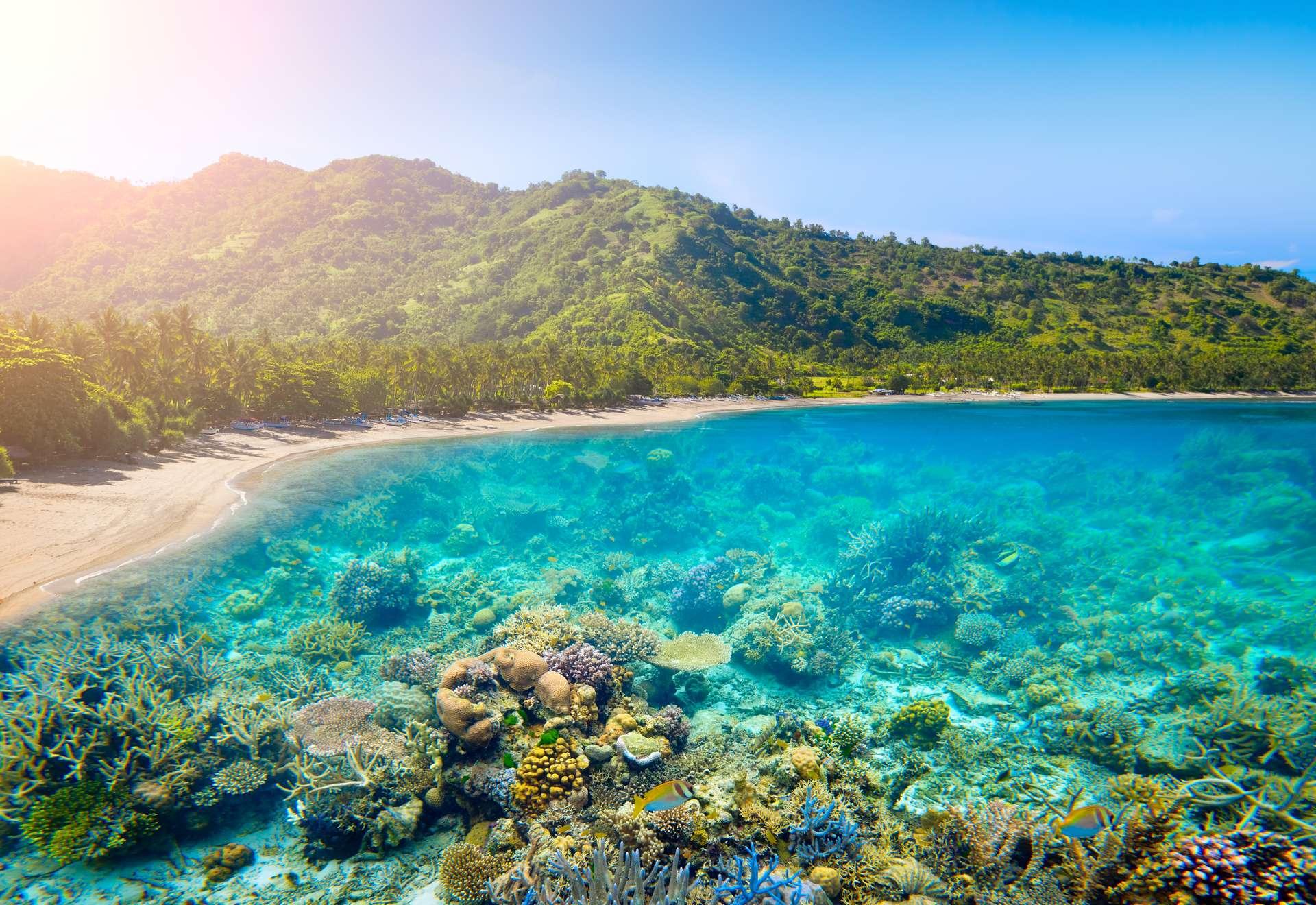 Indonesië Lombok
