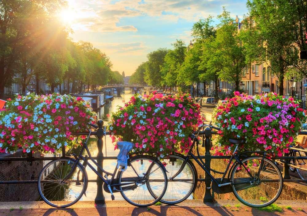 Nederland Amsterdam fietsen op brug