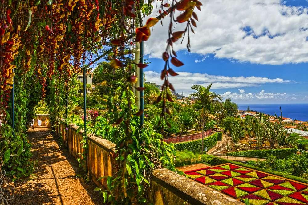 Portugal Madeira  Funchal Botanical Garden Monte