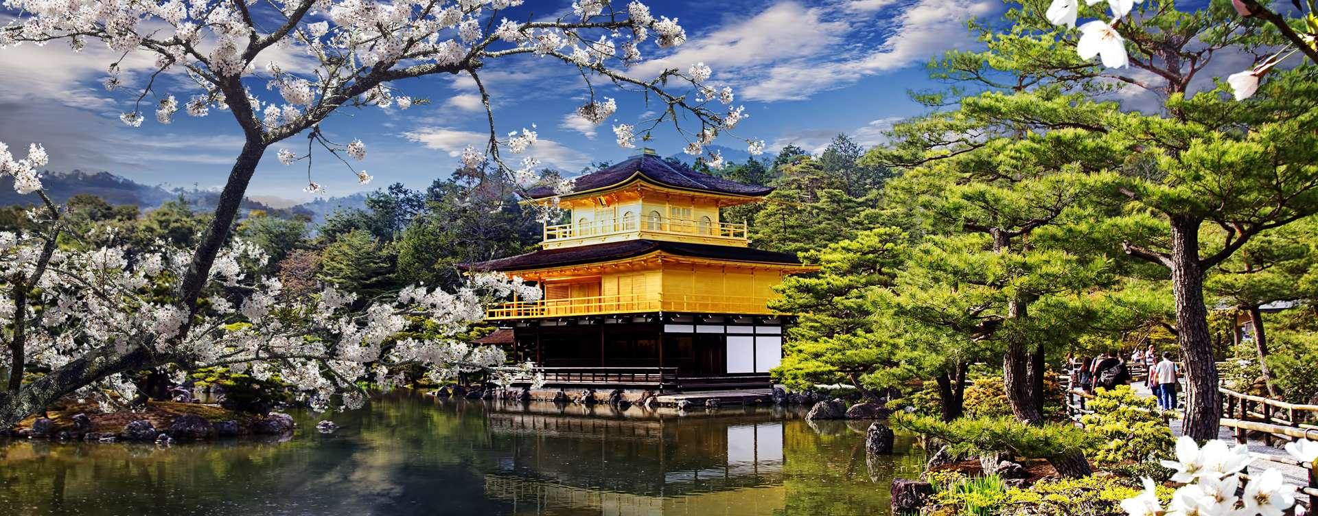 SJA   Japan   Kyoto   Gouden Tempel   Sakura   shutterstock 136606331