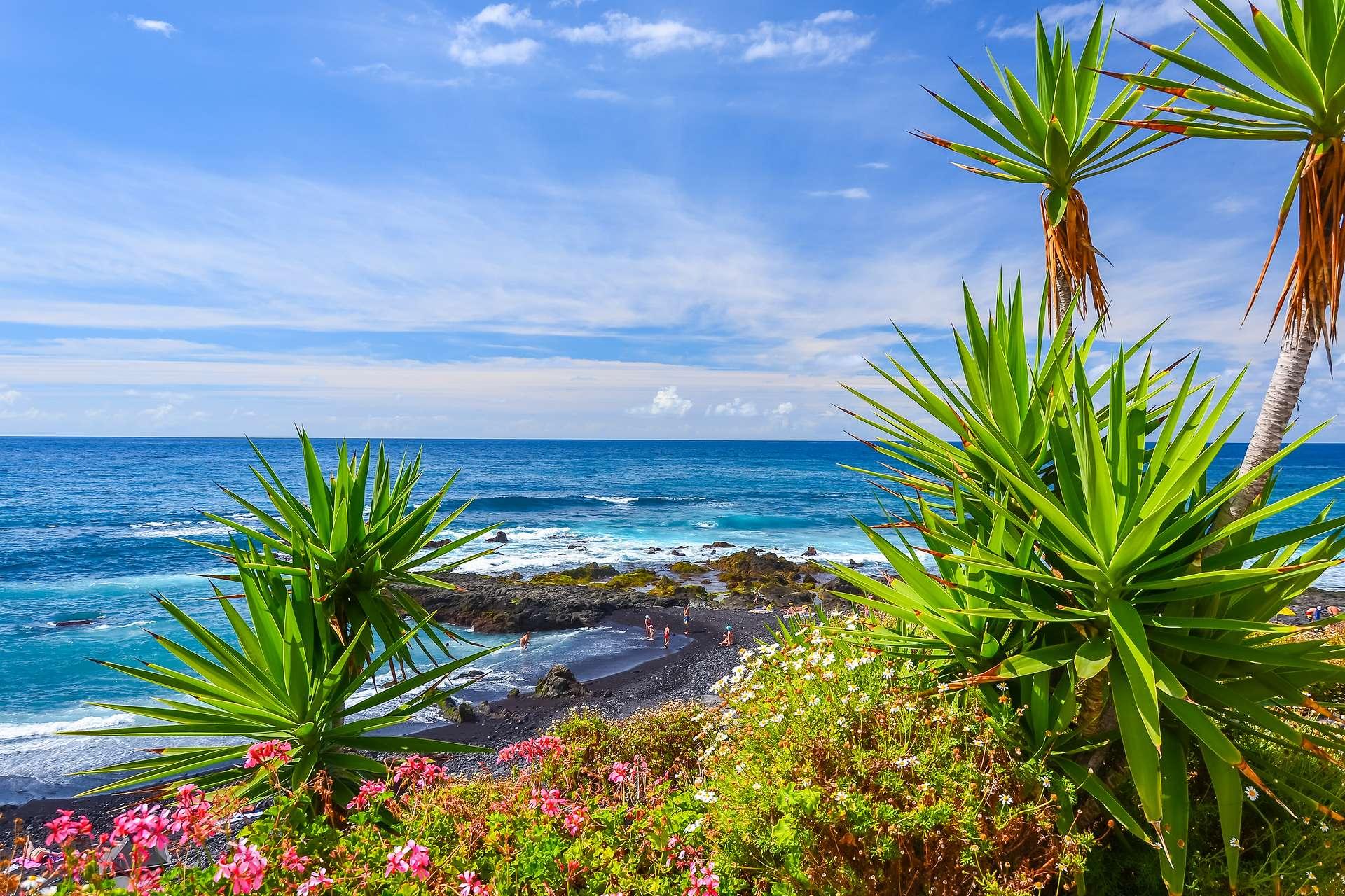 Spanje Canarische eilanden Tenerife Tropische Planten Puerto de la Cruz