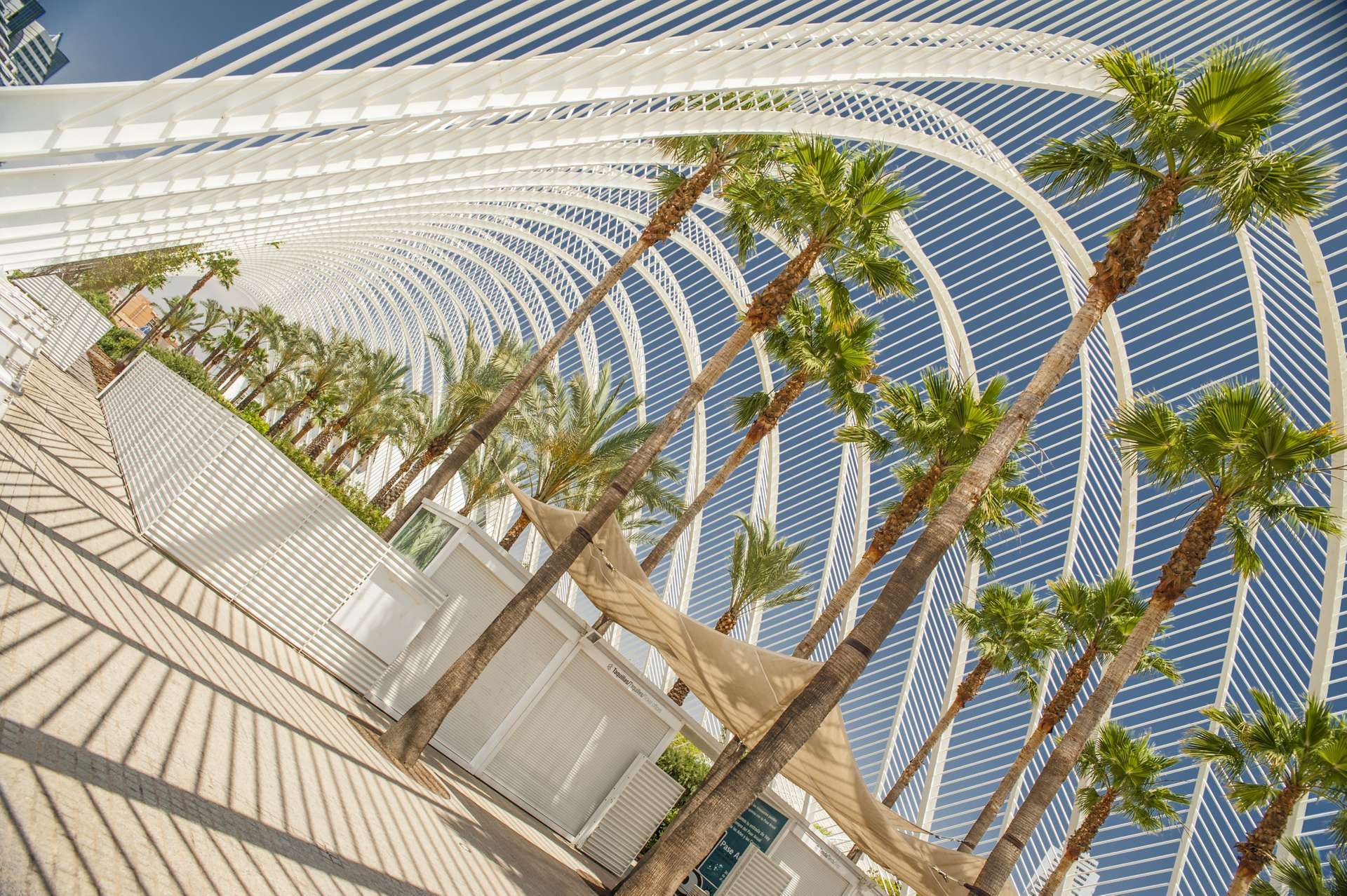 Spanje Valencia museum path