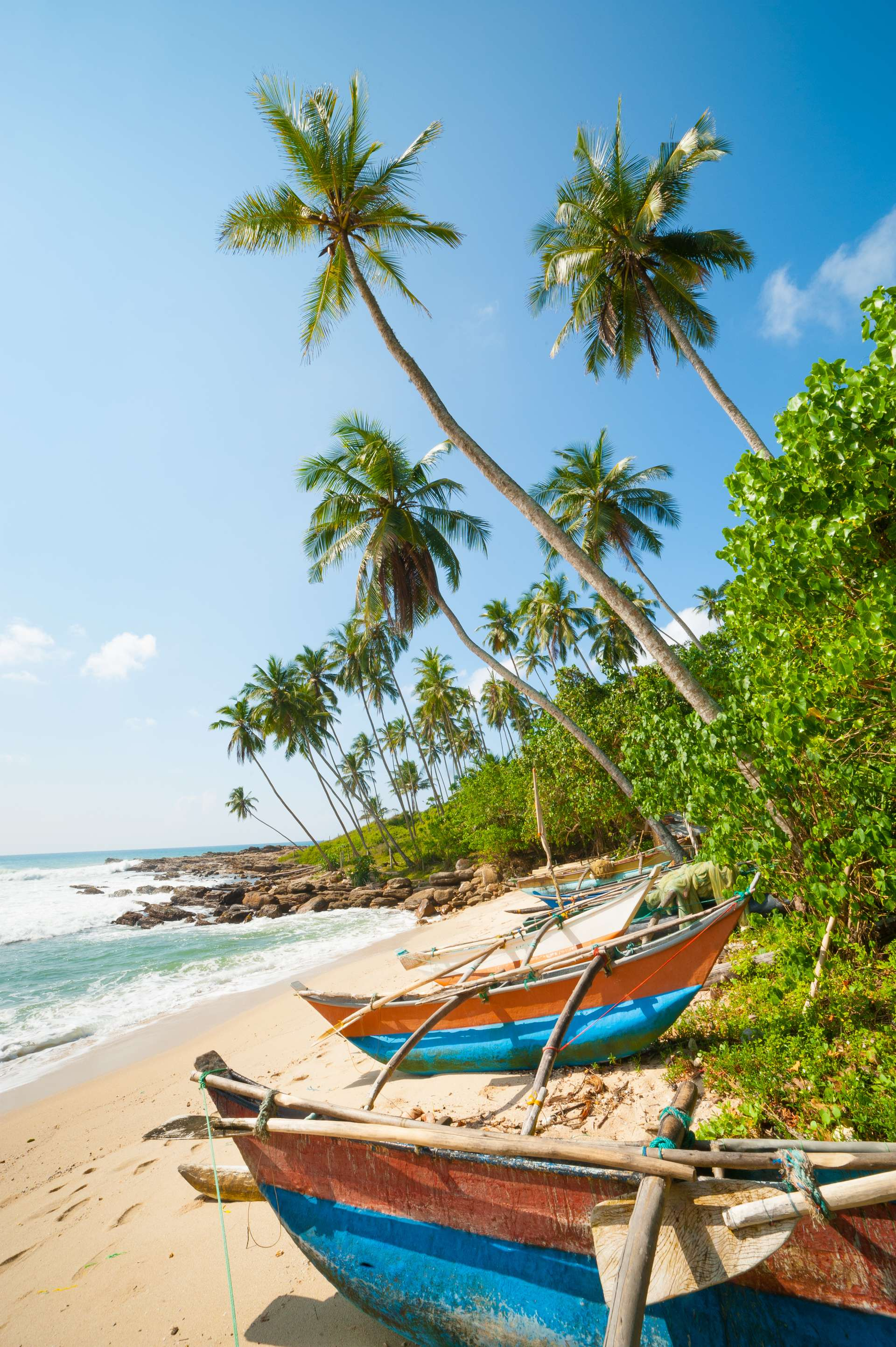 Sri Lanka tropical beach with palms and fishing boats