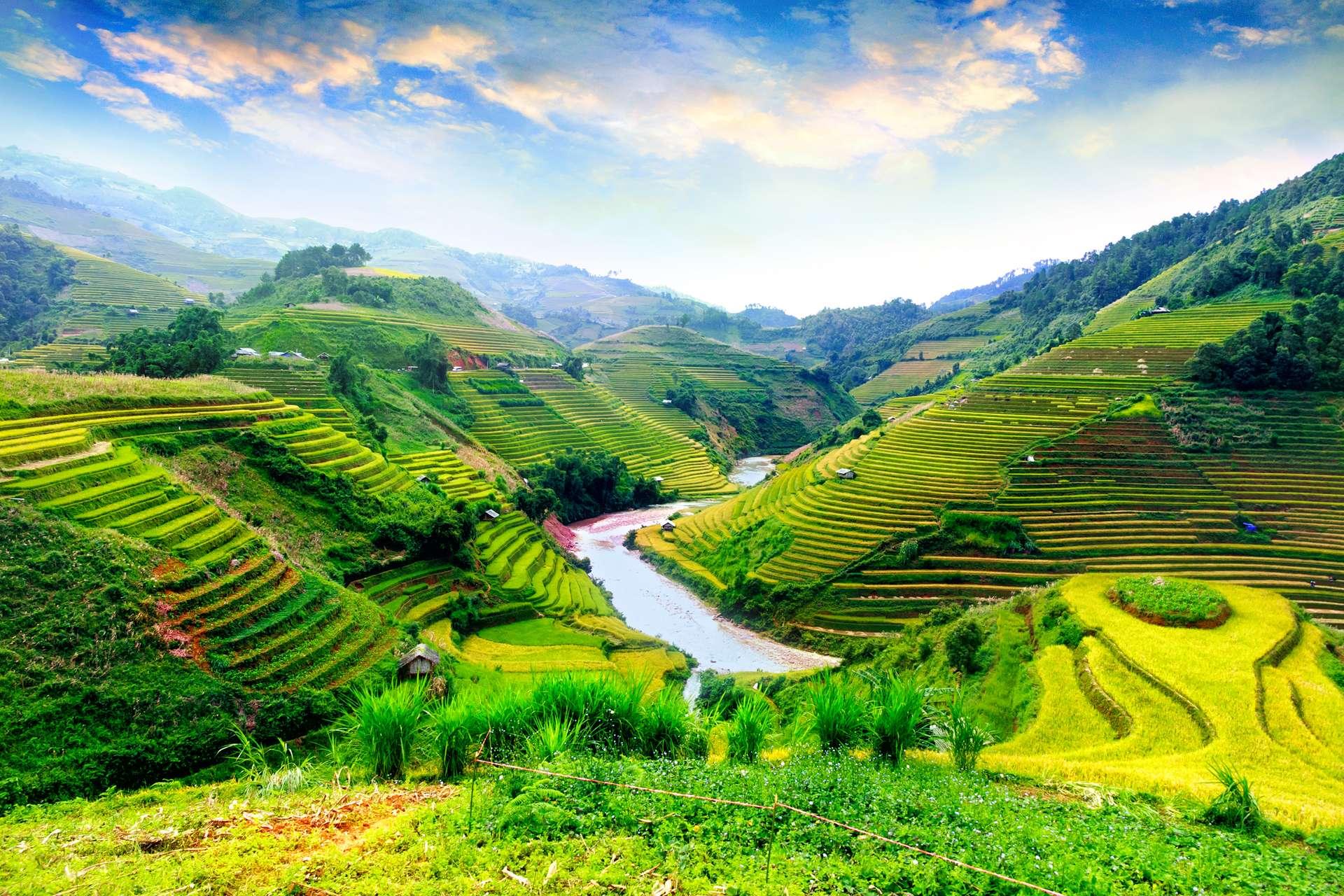 Vietnam YenBai Mu Cang Chai rijstvelden